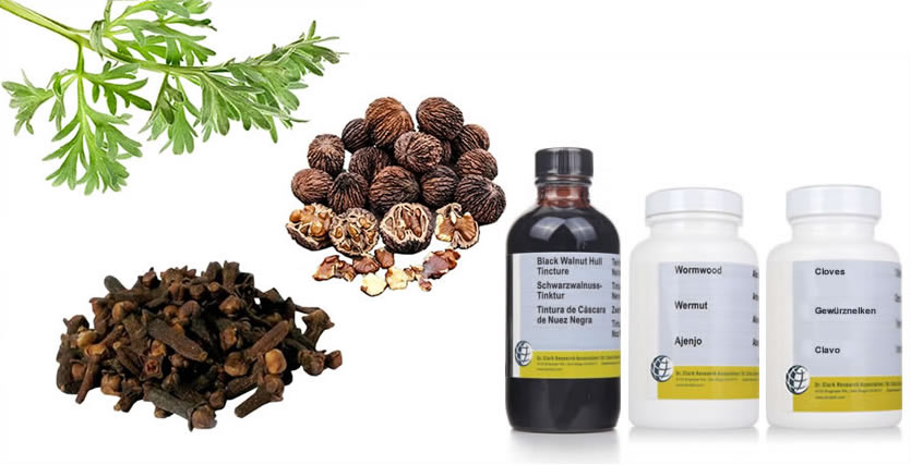 dr. clark's herbal parasite cleanse