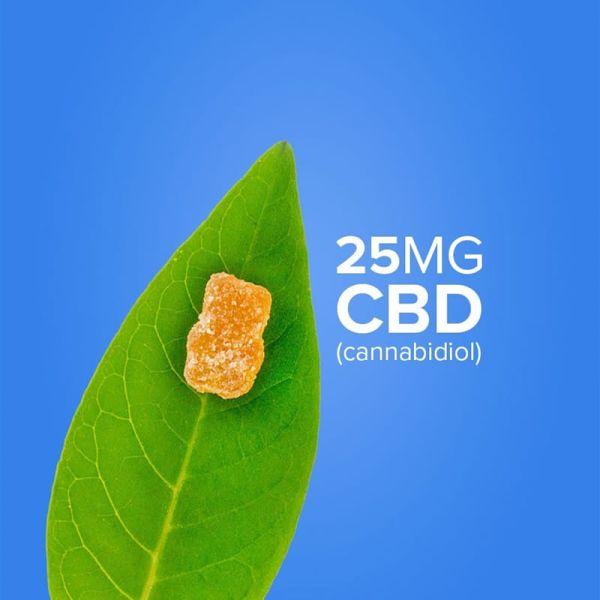 ositos de goma cbd 25 mg